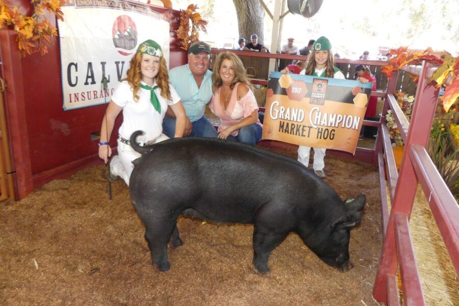 Grand champion market hog award