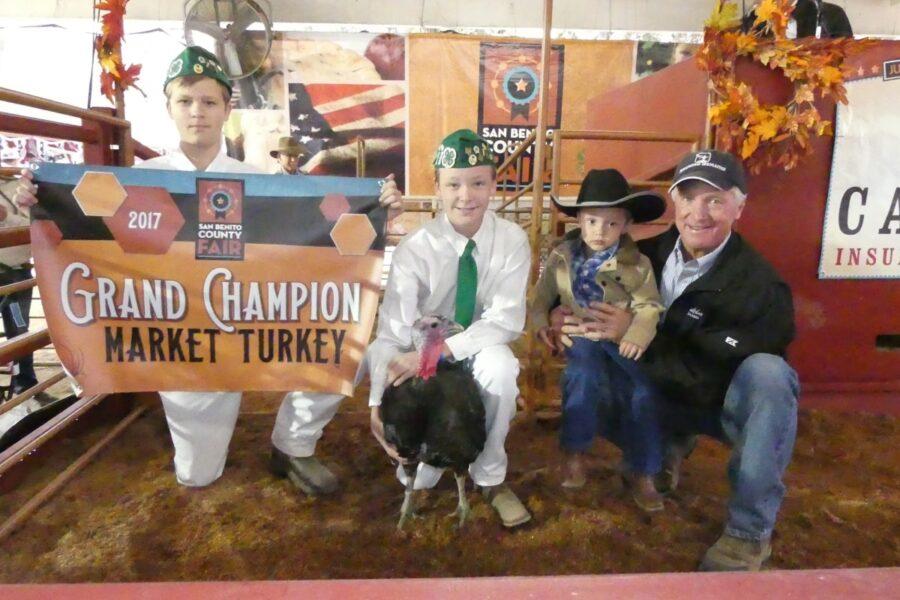 Grand champion market turkey poultry market award
